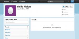 Nancy Nelon Twitter Profile