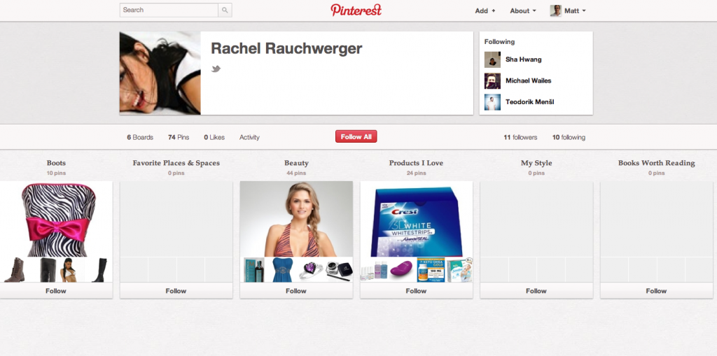 Pinterest Account Page for Rachel Rauchwerger